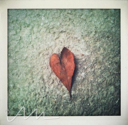 loveandhearts-13