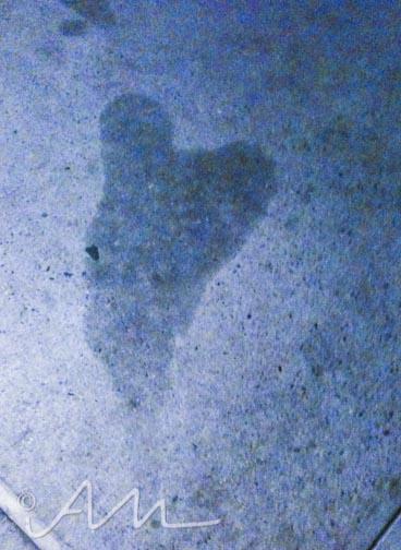 loveandhearts-2-2