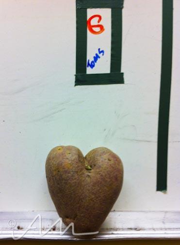 loveandhearts-3