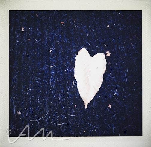 morehearts-9