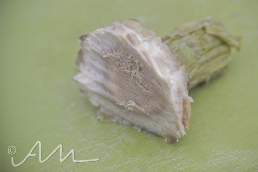 artichokes-11