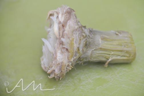 artichokes-9