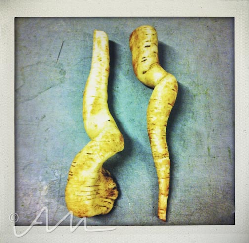 parsniplovers-1