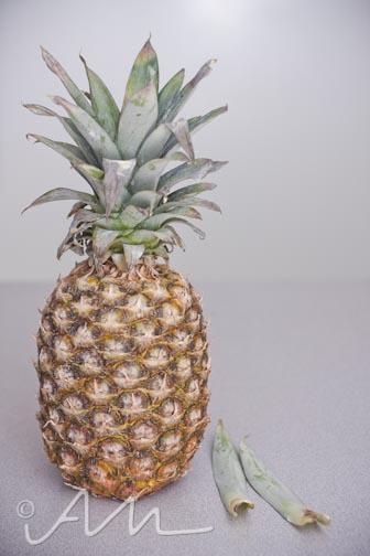 pineapple-1