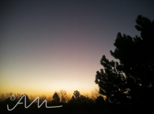 03.12.12-web