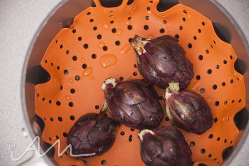 purpleartichokes-7