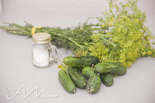 homemadepickles-6