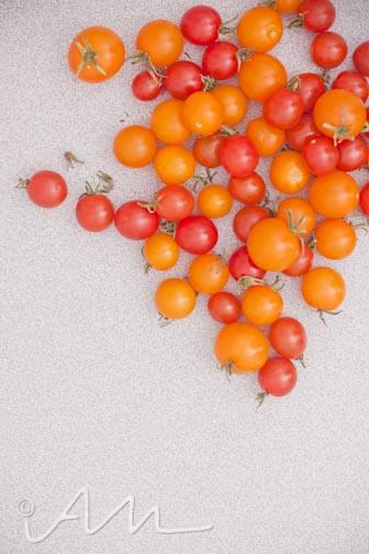 tomatogoatcheesetoast-2