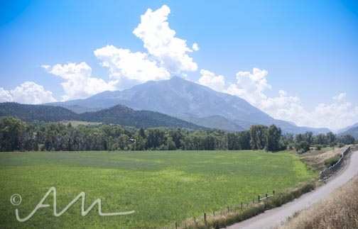 thevalley-1