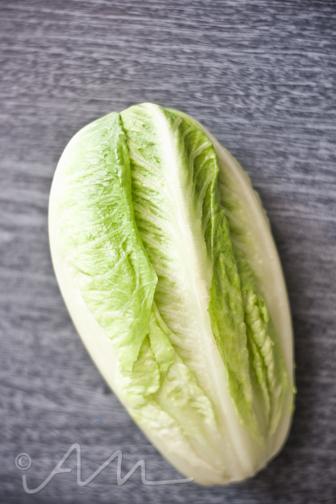lettucewrapogbeef-4