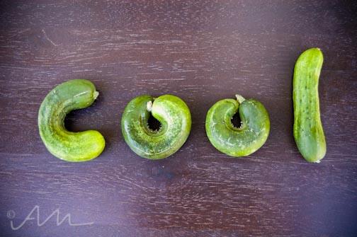 coolasacucumber-1