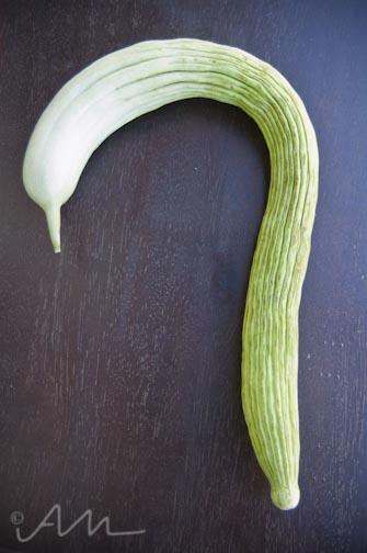 snakemelon-1