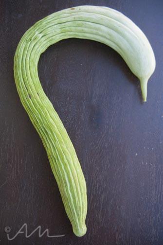 snakemelon-2