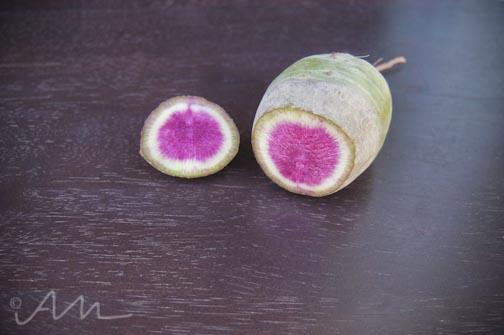 watermelonradish-4