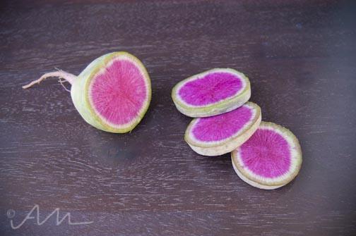 watermelonradish-7