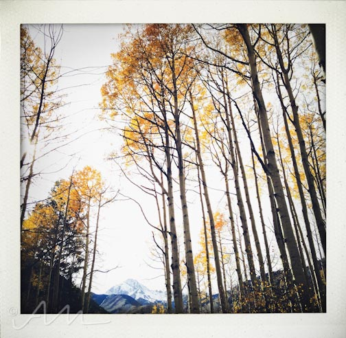 eyesoftheaspens-19