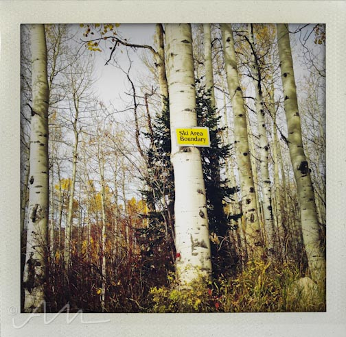eyesoftheaspens-22
