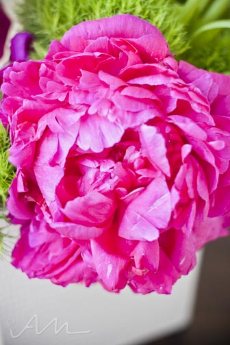 youcanlearnalotfromtheflowers-13