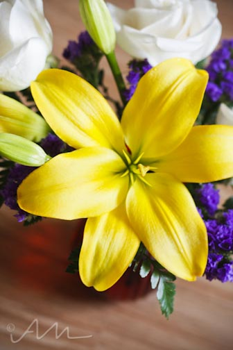 davidsflowers-5
