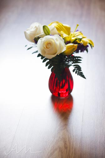 davidsflowers-8