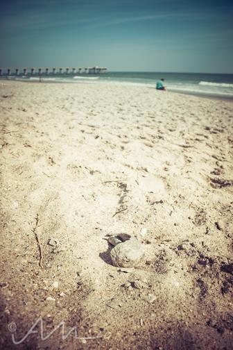 beach-web-20