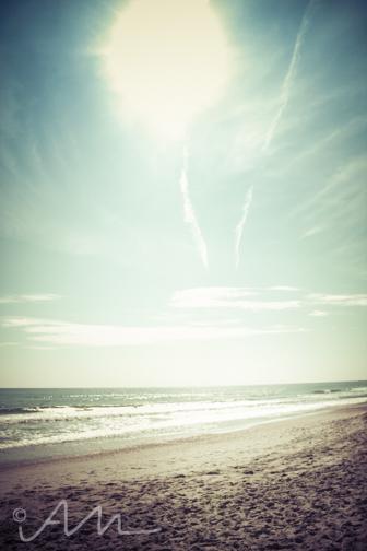 beach-web-3