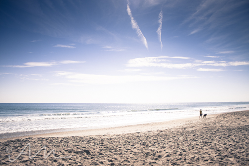 beach-web-6