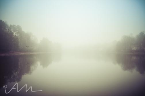 fog-2