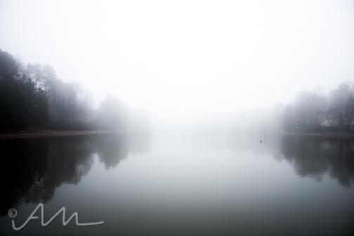 fog-3